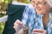 Seniorenwohnungen Ried im Innkreis